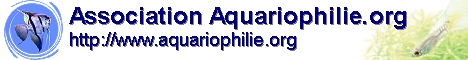 Association Aquariophilie.org