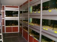 Batteries du magasin Rio Del Mar