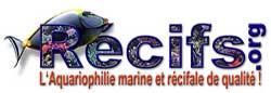 Récifs.org