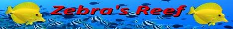 Zébra's Reef