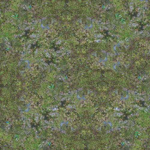 [Image: swamp-10.jpg]