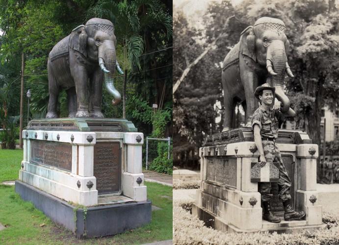 næstved zoo Gorm street thai