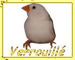 Forum Verrouill�