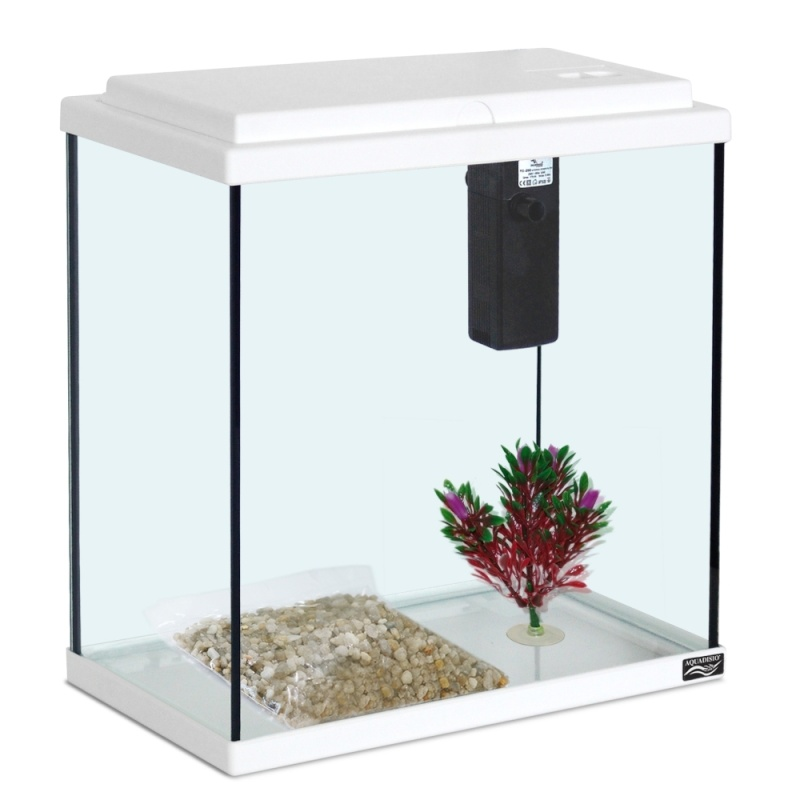 Nombre d 39 aquarium s 0 for Aquarium 30 litres pas cher