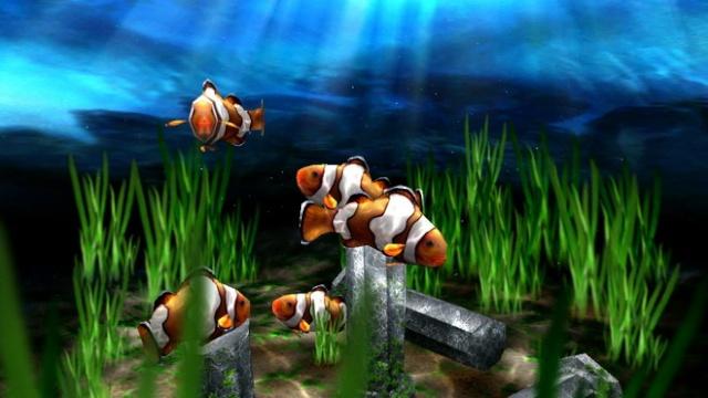 peixes papel de parede