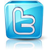 http://i39.servimg.com/u/f39/11/37/25/76/twitte10.png