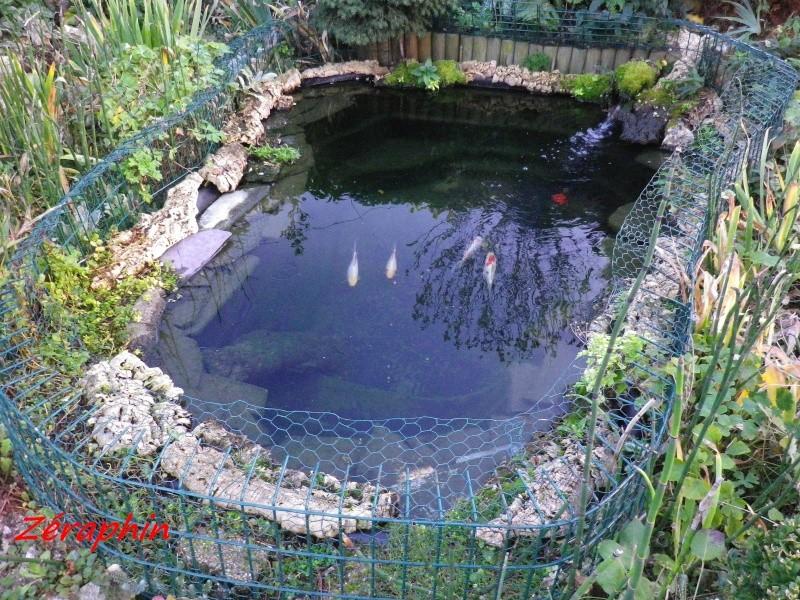 D coration 17 bassin japonais hors sol caen caen paris pas cher caen paris voiture code - Bassin sur balcon angers ...