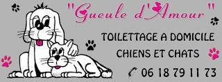 Gueule d'Amour, toilettage � domicile