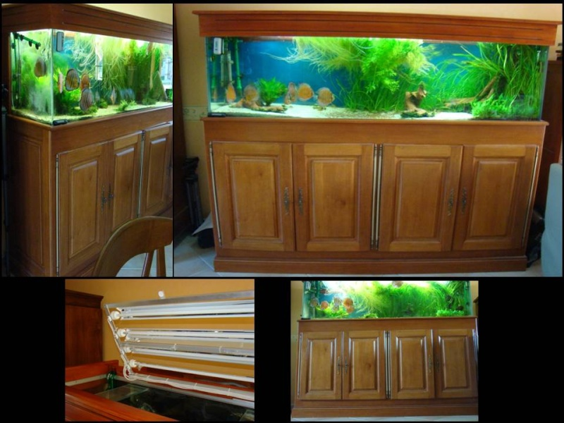 achat aquarium 70l. Black Bedroom Furniture Sets. Home Design Ideas