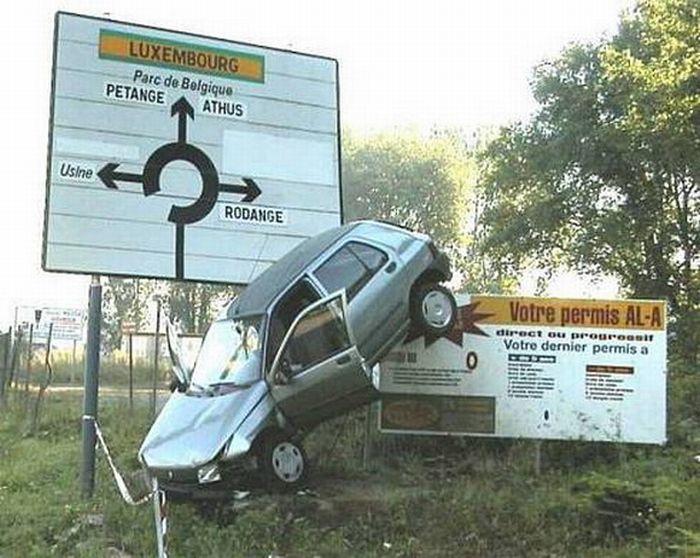 photo drole permis de conduire