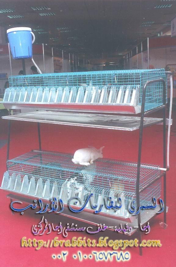 بطاريات الأرانب بالصور والأسعار بأجا