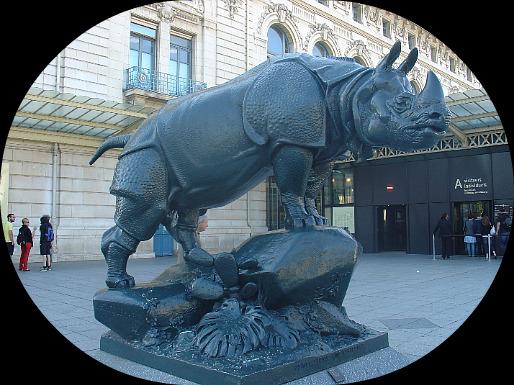 Le Rhino sur le parvis du musée d'Orsay !  dans Le jardin des souvenirs 06710