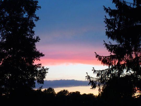 Du soir... dans Le jardin des souvenirs 92673410