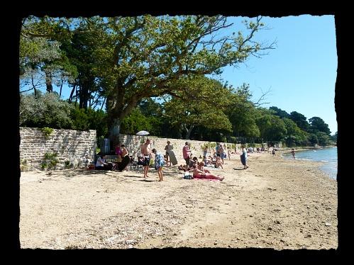 La plage de cet été ! dans Le jardin des souvenirs talach10