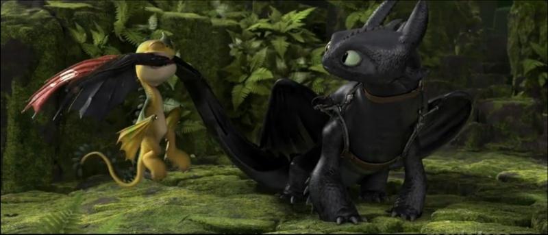 images de bébés dragons