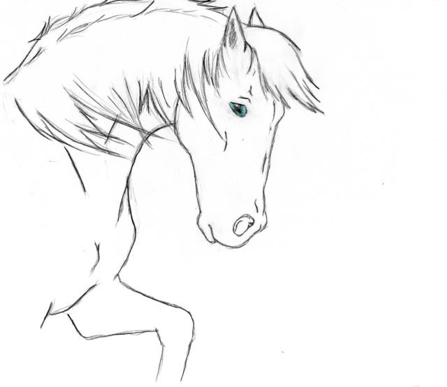 Jugez nos dessins - Cheval qui saute dessin ...