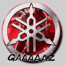 gaaaaz11.jpg