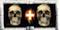 moyen skull