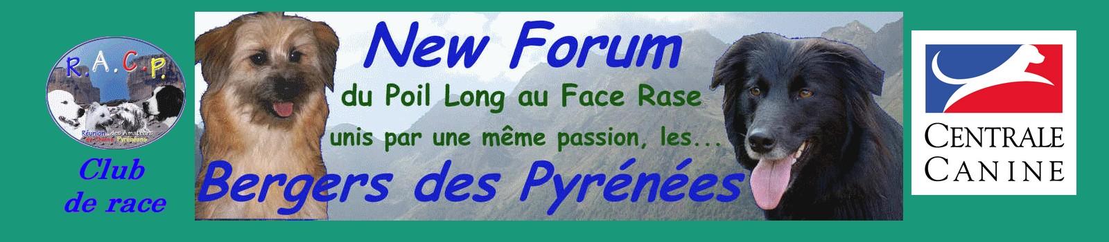 Bienvenue sur New Forum Bergers des Pyrénées