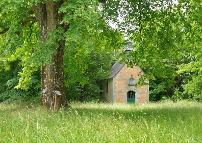 Sites mystérieux de l'Avesnois p6176712