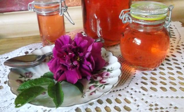 Cuisiner avec les plantes - Cuisiner les radis roses ...
