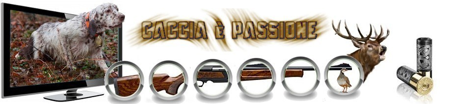 forum,caccia,cinofilia,armi e munizioni
