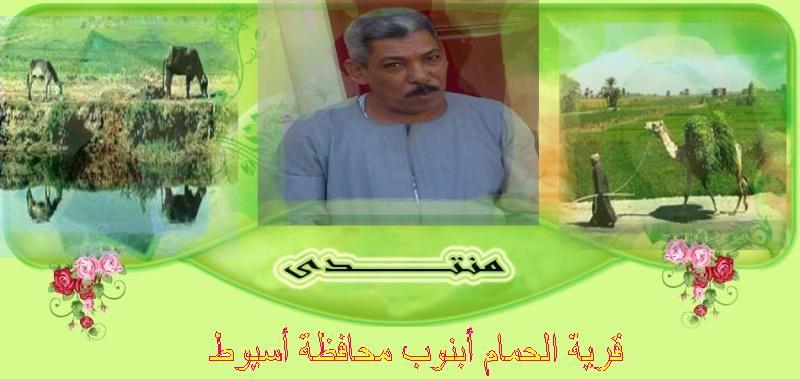 منتدى قرية الحمام أبنوب محافظة أسيوط