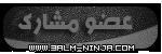 عضو مشاركـ
