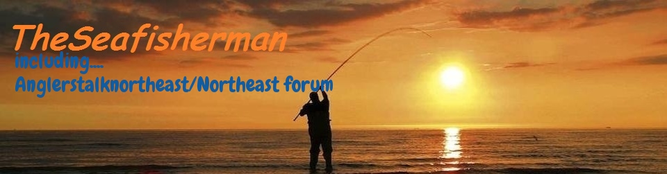 www.theseafisherman.com