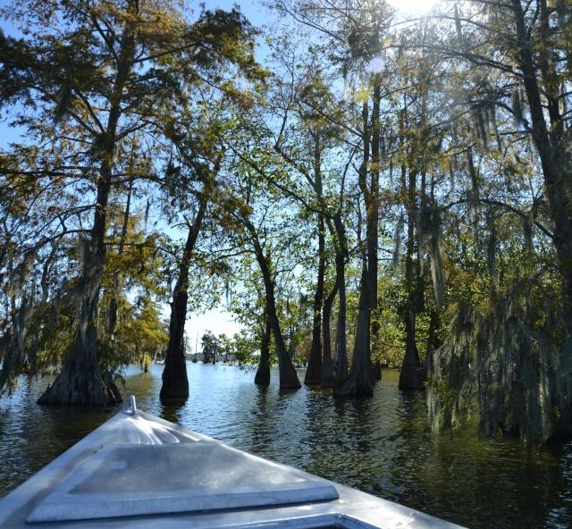 Rencontre swampy 14