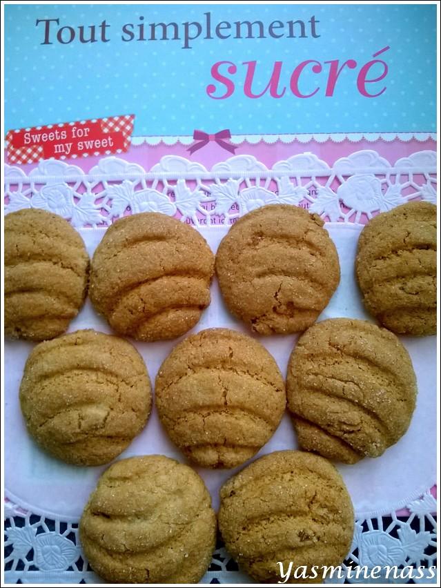 http://i39.servimg.com/u/f39/14/47/36/95/biscui10.jpg