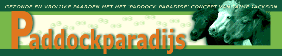 Paddockparadijs forum