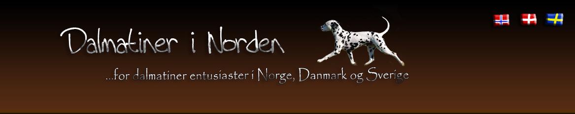 Dalmatiner i Norden
