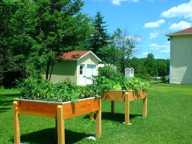 Jardins sur lev s resolu for Jardin 5 juillet biskra