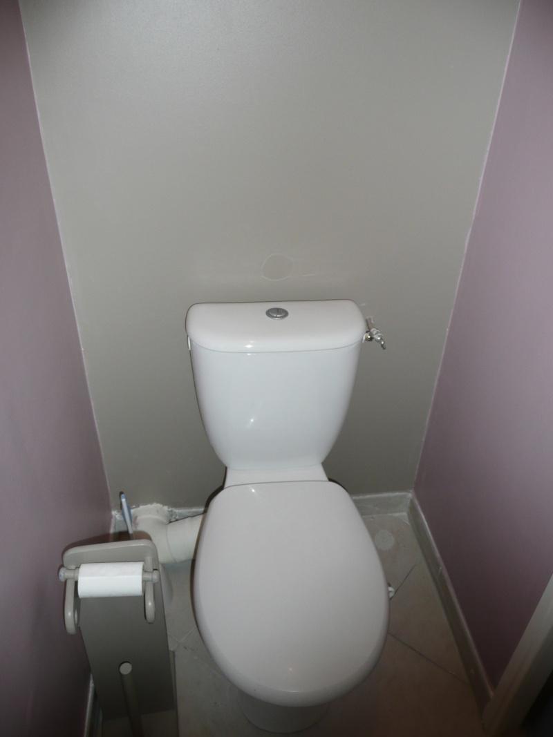 Idee couleur peinture pour toilette id e inspirante pour la conception de la maison for Peinture pour toilette