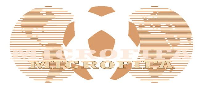 Federación Intermicronacional de Futbol