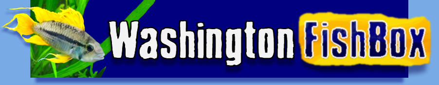 Washington FishBox