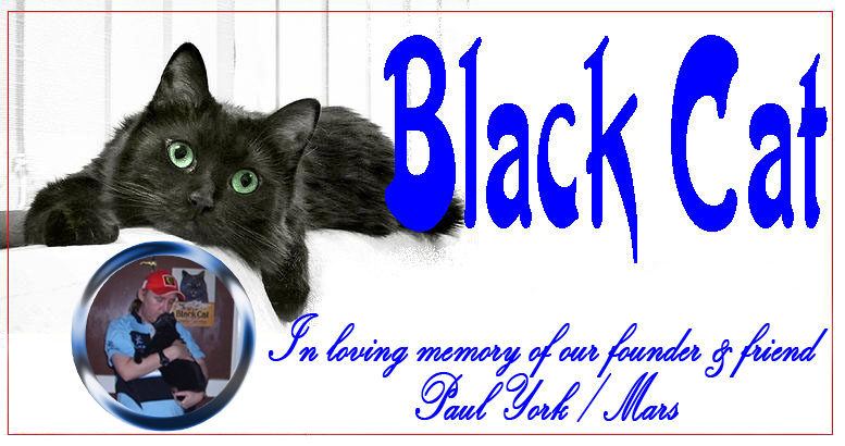 Black Cat Friendship Forum
