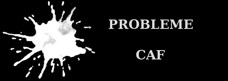 Probleme Droit Caf
