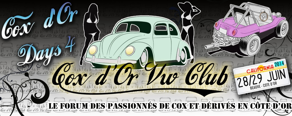 Cox d'Or VW Club