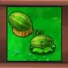Melonpulta