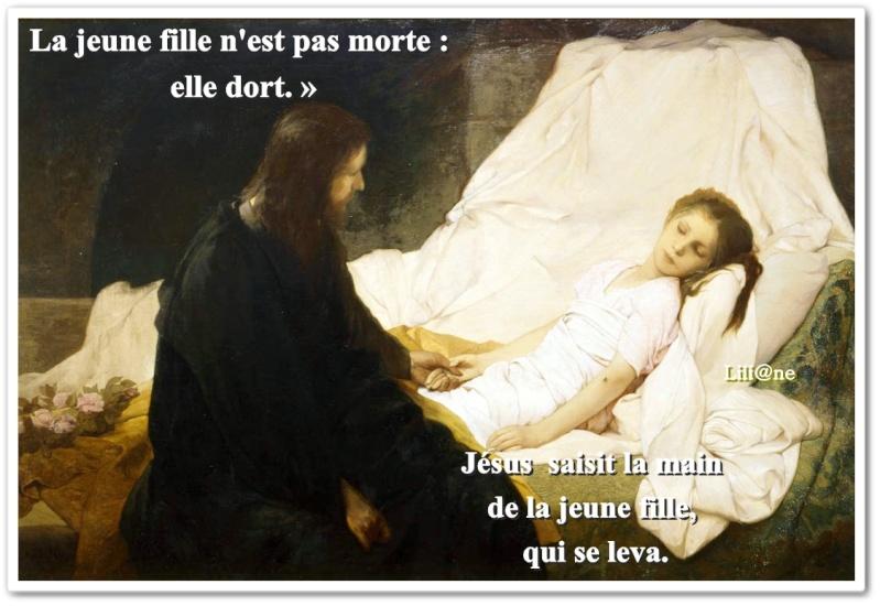 Mon Seigneur † et Mon Dieu † - Page 83