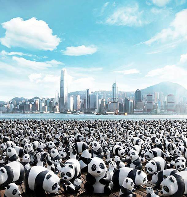 1600 panda world. Black Bedroom Furniture Sets. Home Design Ideas