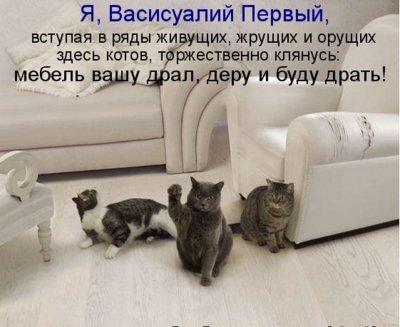 http://i39.servimg.com/u/f39/15/99/40/99/prev11.jpg