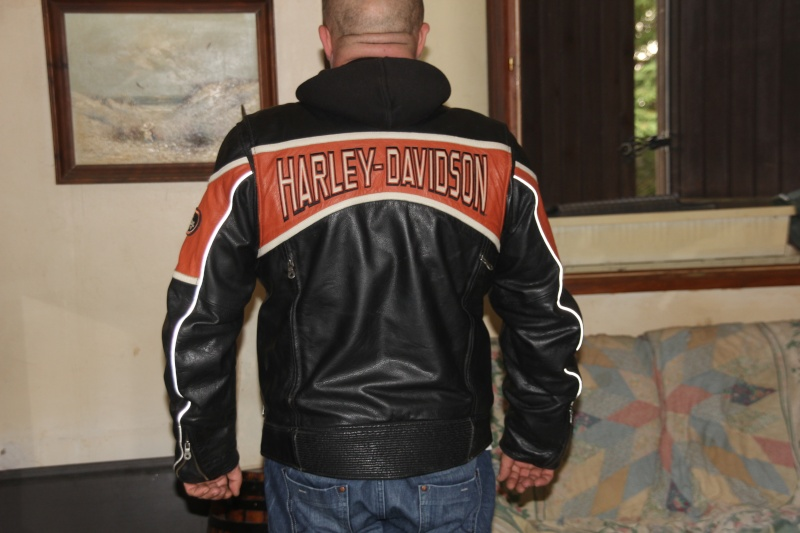 petites annonces vends blouson harley davidson. Black Bedroom Furniture Sets. Home Design Ideas