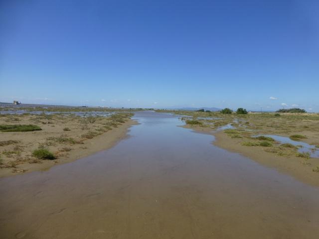 Sur un chemin pavé d'eau dans GRUISSAN p1100010