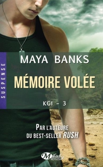 http://lachroniquedespassions.blogspot.fr/2014/07/kgi-series-tome-3-memoire-volee-de-maya.html
