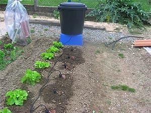 Arosage autoris s aux jardins et vergers de la chouette for Arrosage jardin potager