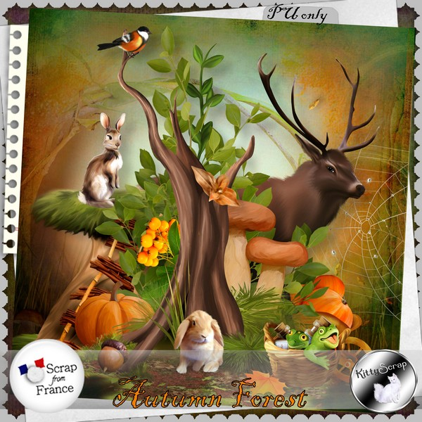Autumn forest de Kittyscrap kittys94