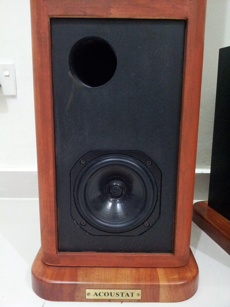Acoustat Esl Hybrid Electrostatic Floorstanding Speaker Used